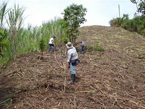 Tema 2 - Preparacion de la tierra para sembrar ...